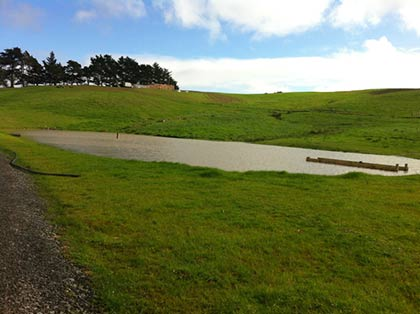 Pond and Driveway formation - Kaihikatea Flats 7